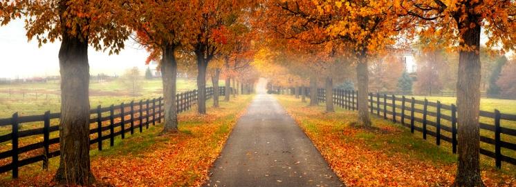 Autumn in Shenandoah Valley