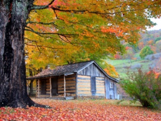 A rustic cabin in the mountains at peak fall season. Rich color and details.