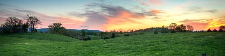 Virginia_Banner