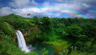 600x600_1303855002414-WaterfallinKauaiwithRainbow