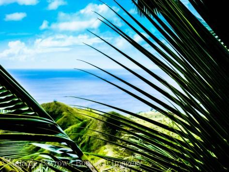 hawaii2006-8
